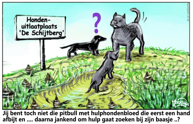 Pitbull | cartoon | honden