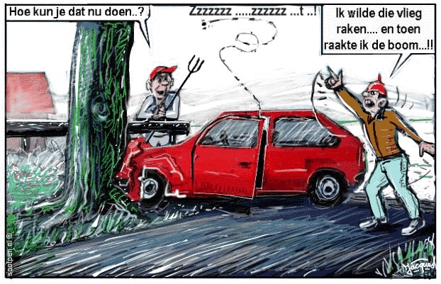cartoon auto botsing boom insect