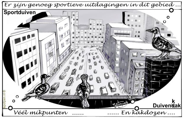duif duiven cartoon