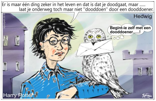Harry Potter cartoon uil Hedwig