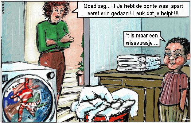 Cartoon kat poes wasmachine poezen