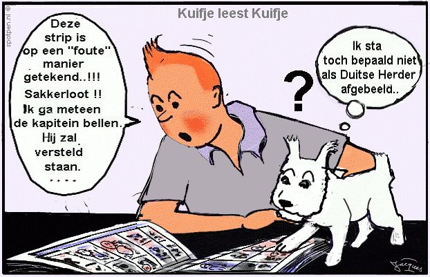 Cartoon Kuifje strips stripverhaal  Hergé