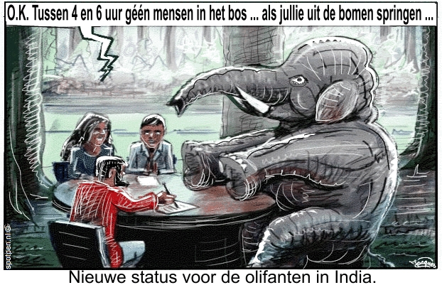 Cartoon  olifanten