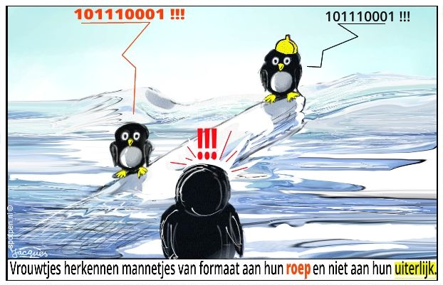 Cartoon pinguïns zuidpool antarctica
