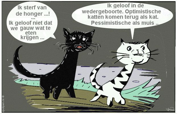 Cartoon  poezen poes Kat katten