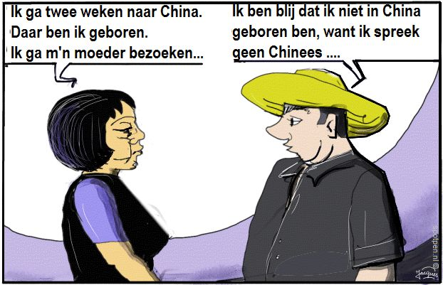 tweetaligheid  tweetalig talen cartoon