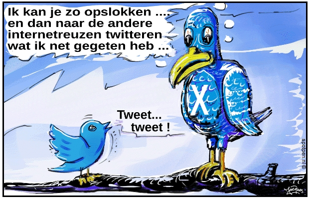 Twitter, bird, vogel