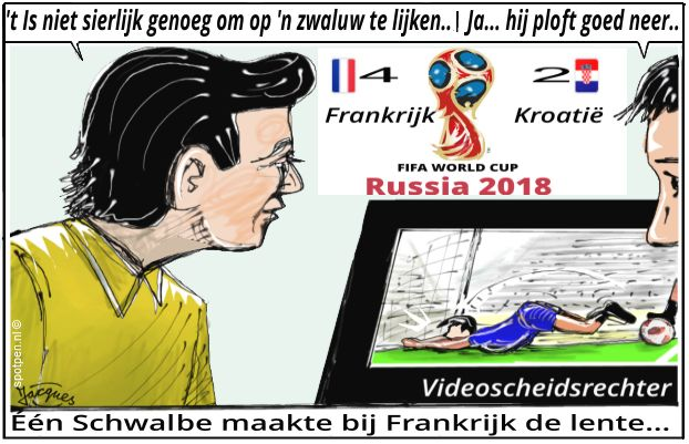 Schwalbe cartoon voetballen