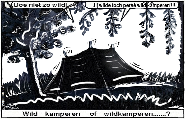 wildkamperen cartoon buitengebied wild kamperen